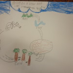 comprehension strategies story map